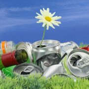 14039970 - environmental conservation concept. garbage with growing daisy
