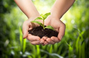 Agrárgazdasági Kamara, termelő, őstermelői, agrár, termékdíj, környezetvédelmi termékdíj